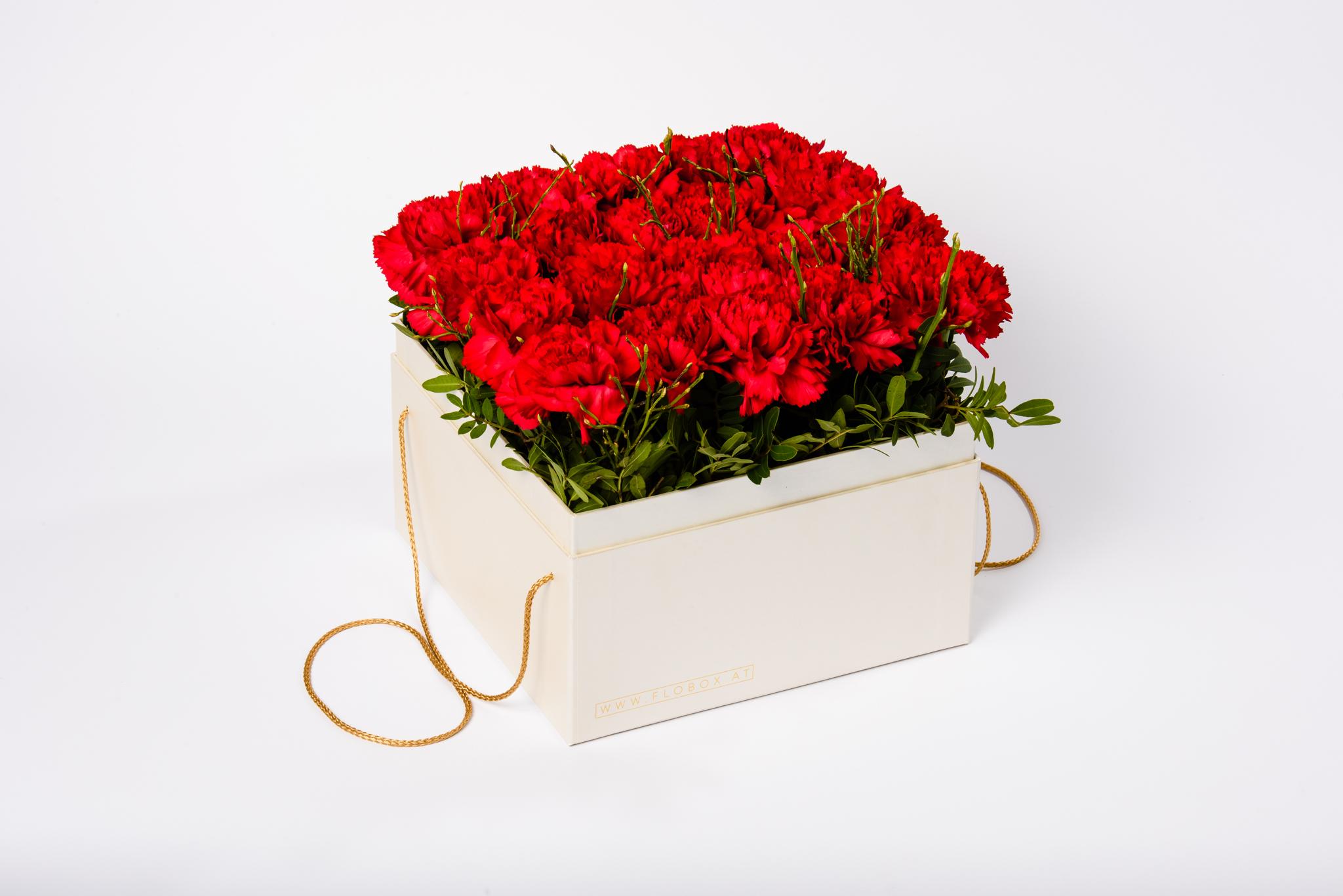 Berühmt Diplomat Rote Nelken | flobox - Andreja Mayer #LT_11