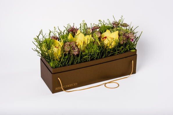 flobox Diplomat Orchidee