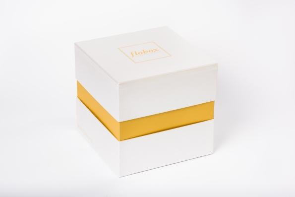 flobox Prestige Vanilla-Gold