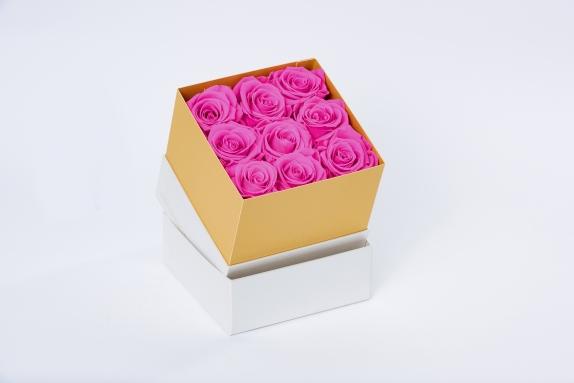 flobox Prestige Fuchsia Rosen konserviert