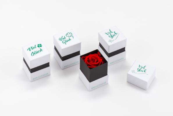 Glücksbox 4 Stück