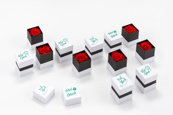 Glücksbox 12 Stück